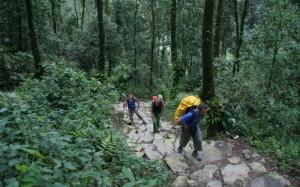 [Nepal] Pokhara, Trekking del campo base del Annapurna