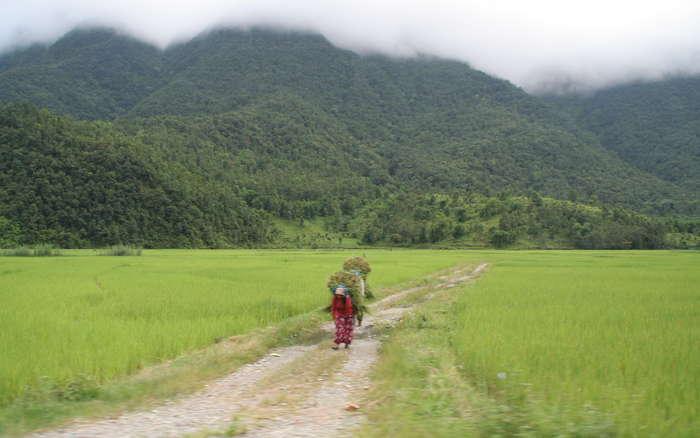 Una Nepali porteando arroz
