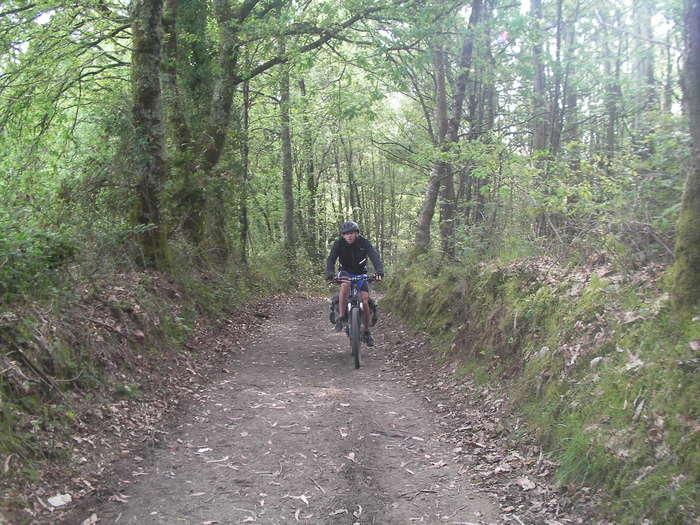 Un etapa en la Atravesando uno de los numerosos bosques